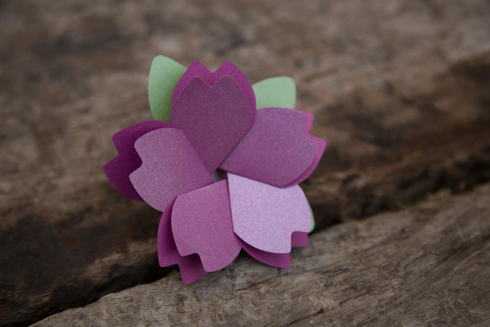 벚꽃카드 - 아브젝시옹, 2,800원, 카드, 사랑/고백 카드