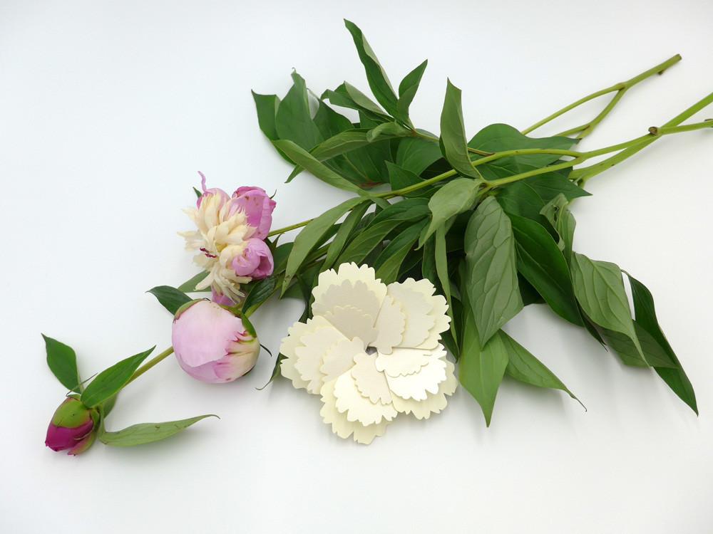 화이트 플라워 White Flower - 아브젝시옹, 2,800원, 카드, 사랑/고백 카드