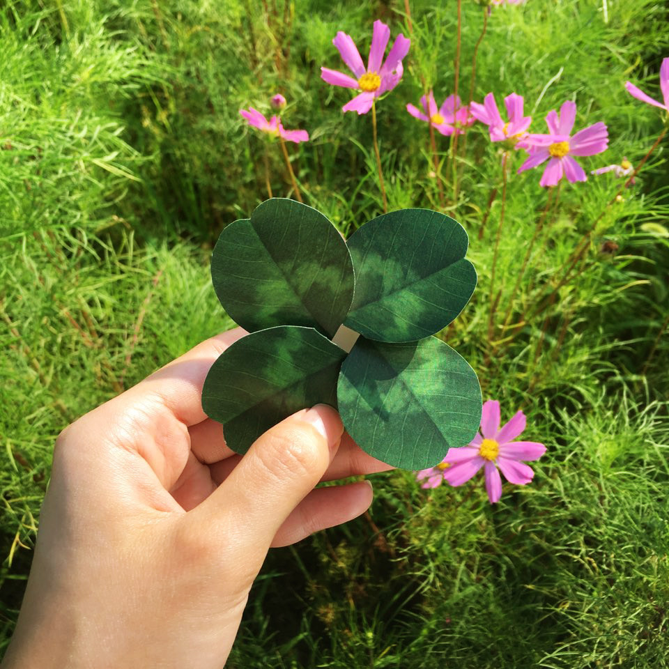 네잎 클로버 카드 Four leaf clover Card - 아브젝시옹, 2,000원, 카드, 입체 팝업 카드