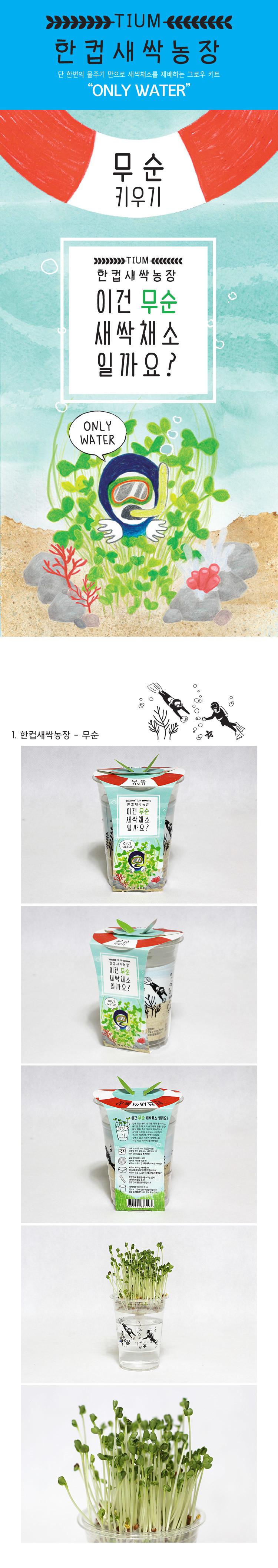 한컵새싹농장_무순키우기 - 틔움세상, 3,000원, 새싹/모종키우기, 새싹 키우기