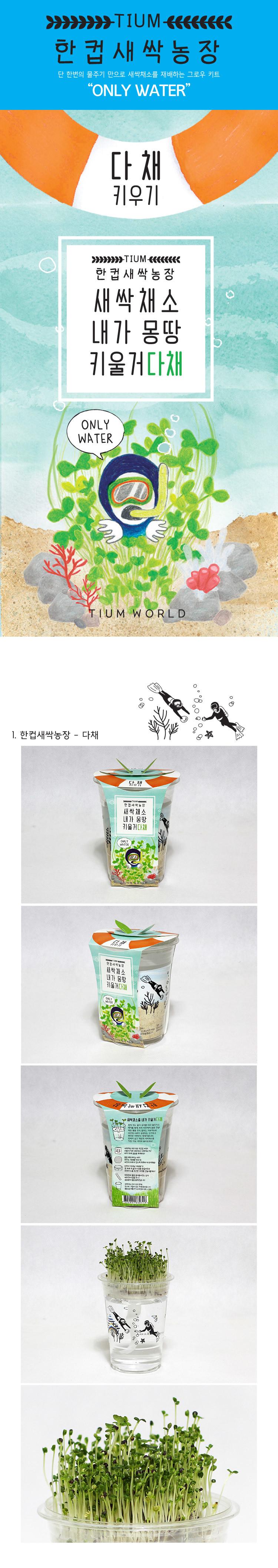 한컵새싹농장_다채키우기 - 틔움세상, 3,000원, 새싹/모종키우기, 새싹 키우기