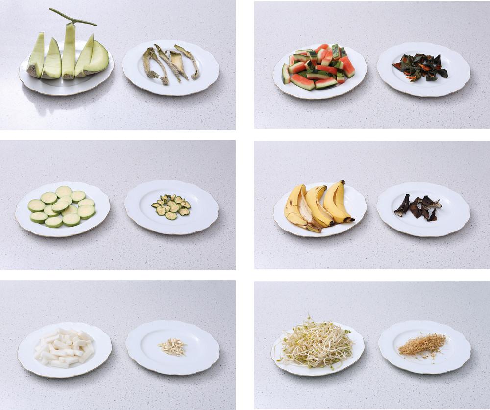 루펜 음식물 처리기 말린 음식물 food waste reducer slw 03