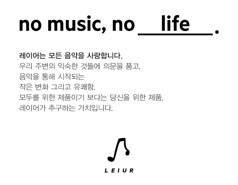 no music no life leiur