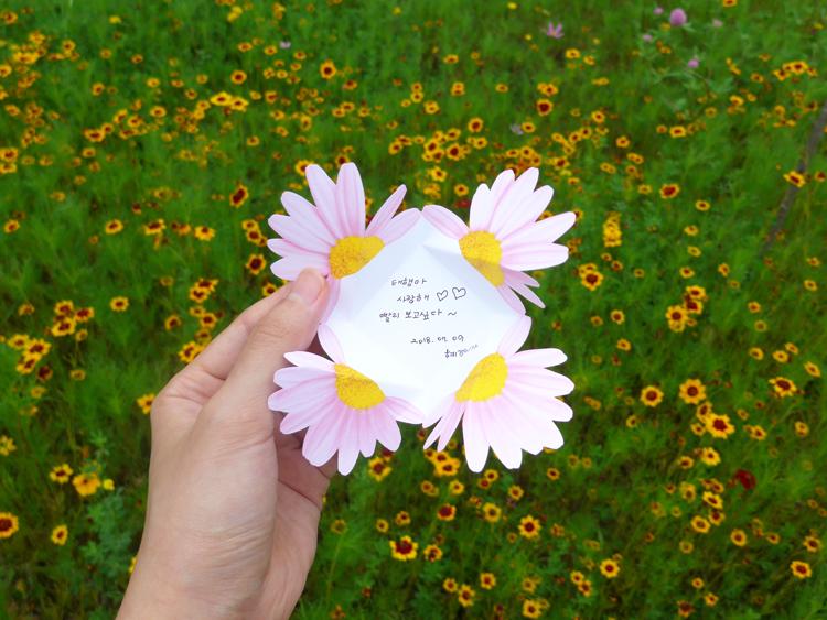 데이지카드세트 Daisy Card SET - 아브젝시옹, 2,500원, 카드, 디자인 카드